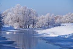 Rivière Talitsa d'Altai avec avec des couples des cygnes et la réflexion de Photographie stock