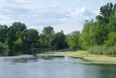 Rivière, terre avec des arbres et ciel nuageux Photographie stock libre de droits