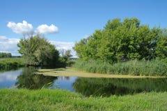 Rivière, terre avec des arbres et ciel nuageux Photos libres de droits