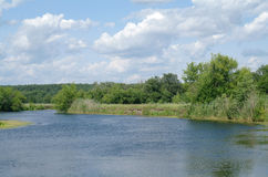 Rivière, terre avec des arbres et ciel nuageux Photo libre de droits