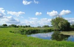 Rivière, terre avec des arbres et ciel nuageux Images stock