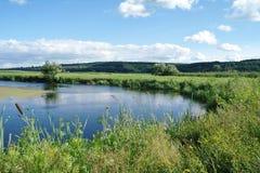 Rivière, terre avec des arbres et ciel nuageux Photos stock