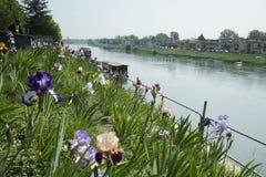 Rivière Tessin à Pavie, Italie Image stock