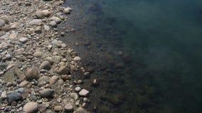Rivière transparente claire près d'un lit de rivière rocheux Photographie stock libre de droits