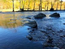 Rivière traversant les bois Image libre de droits