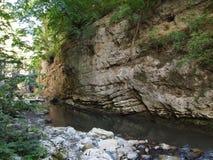 Rivière traversant un canyon en montagnes d'Apuseni, Roumanie Image stock