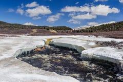 Rivière turbulente en montagnes d'Altai Photo stock