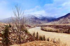 Rivière turbulente en montagnes d'Altai Photographie stock libre de droits