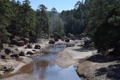 Rivière une sierra Tarahumara Images libres de droits