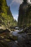 Rivière Vydra en montagnes de Sumava Photos libres de droits