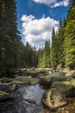 Rivière Vydra en montagnes de Sumava Photo stock