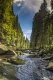 Rivière Vydra en montagnes de Sumava Images stock