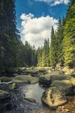 Rivière Vydra en montagnes de Sumava Image libre de droits
