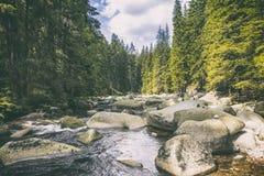 Rivière Vydra en montagnes de Sumava Images libres de droits