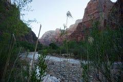 Rivière Zion de Vierge Photos libres de droits