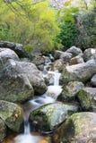 Rivières lentes Image libre de droits