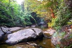 rivier Royalty-vrije Stock Fotografie