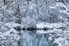 Rivier in aard en takken en bomen met sneeuw worden behandeld die royalty-vrije stock afbeeldingen