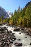 Rivier, bergen en bomen. Royalty-vrije Stock Foto