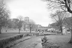 Rivier bij fonteinenabdij royalty-vrije stock afbeelding