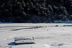 Rivier bij Yumthang-Vallei Royalty-vrije Stock Afbeeldingen