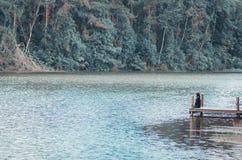 Rivier bos en jonge vrouwen stock afbeelding