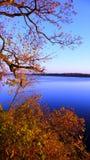 Rivier Daugava in de herfst Royalty-vrije Stock Afbeeldingen