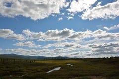 Rivier in de bergen van Siberië Stock Foto's