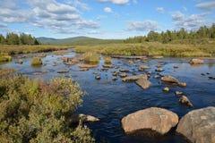 Rivier in de bergen van Siberië in de herfst Stock Foto's