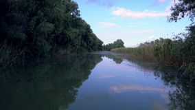 Rivier in de Delta van Donau stock video