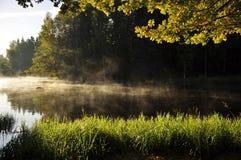 Rivier in de herfst Stock Foto's