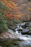 Rivier in de herfst Stock Foto