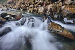 Rivier in de Karpatische bergen Stock Afbeeldingen