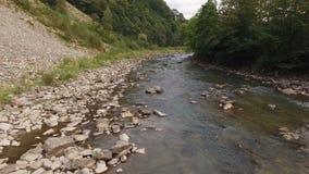 Rivier in de Karpatische bergen stock video