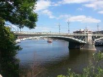 Rivier in de lente Oude brug stock fotografie
