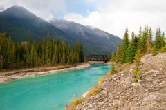 Rivier de Met platte kop van de het noordenvork - Gletsjer Nationaal Park Royalty-vrije Stock Foto