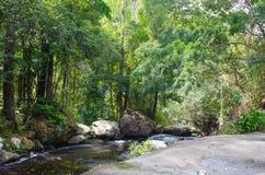 Rivier in de tropische wildernissen van Indochina royalty-vrije stock foto
