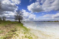 Rivier de Waal, река Waal стоковое изображение rf