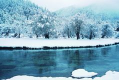 Rivier in de Winter Royalty-vrije Stock Foto's