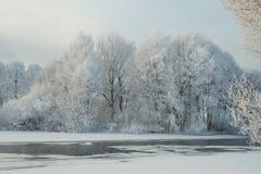 Rivier in de winter Stock Afbeelding