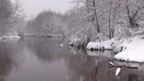Rivier in de winter stock video