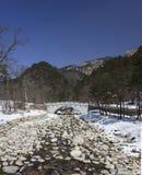 Rivier in de winter Royalty-vrije Stock Afbeelding