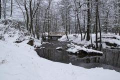 Rivier in de winter Royalty-vrije Stock Afbeeldingen