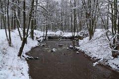 Rivier in de winter Stock Foto