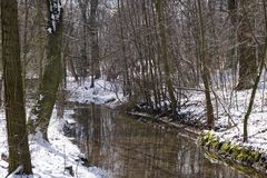 Rivier in de winter met sneeuw in park in Duitsland Stock Foto