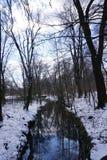 Rivier in de winter met sneeuw in park in Duitsland Royalty-vrije Stock Afbeeldingen