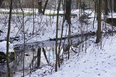 Rivier in de winter met sneeuw in park in Duitsland Royalty-vrije Stock Foto's