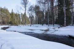 Rivier in de winterbos stock fotografie