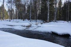 Rivier in de winterbos Stock Afbeeldingen