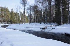 Rivier in de winterbos royalty-vrije stock afbeelding